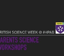 Parental Workshops during Science Week