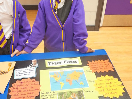 Year 1 Homework Project Showca...