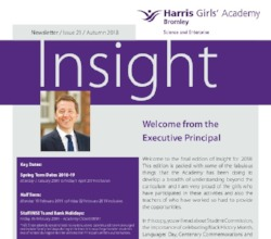 H A Bromley - Insight Issue 21