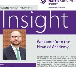 H A Bromley - Insight Issue 24