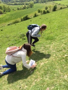 DofE Trail walk May 2016 (17)