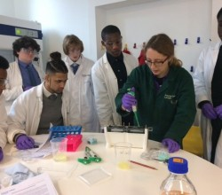 University Laboratory for Year 12 Biology Students