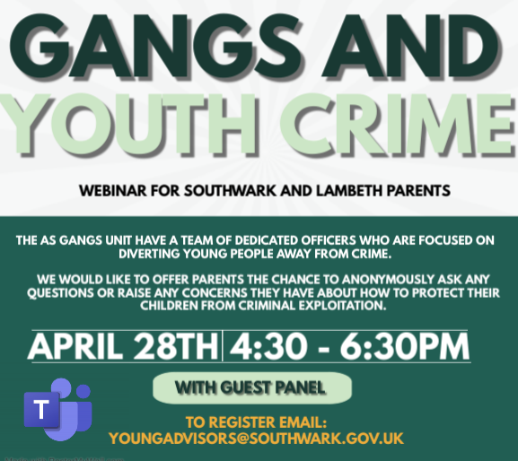 Gangs and Youth Crime Webinar