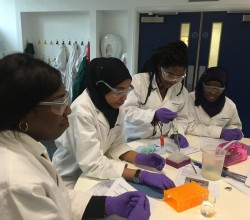 Year 9 Harris Experience Trip to Imperial College London