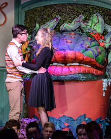 Little shop of horrors 0460