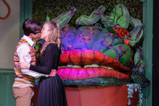 Little shop of horrors 0462