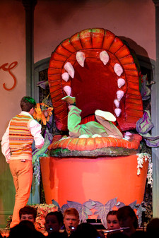 Little shop of horrors 0470