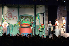 Little shop of horrors 0520