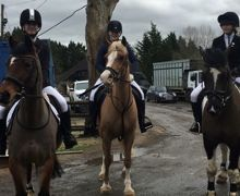 Equestrian march 2020 1