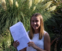 2016 gcse results 85