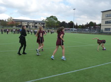 House relay competition 4