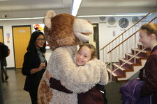 Hug a bear day 3