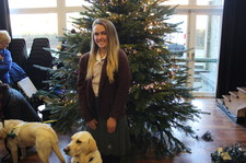 Guide dogs christmas fair 8