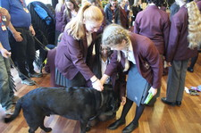 Guide dogs christmas fair 21