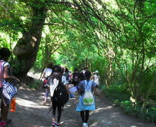 Year 7 boxley trip 108