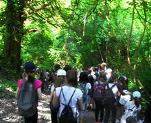 Year 7 boxley trip 110