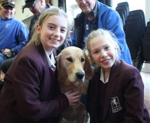Guide dogs christmas fair 4