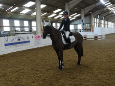 Equestrian county championships 1