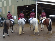 Equestrian county championships 5