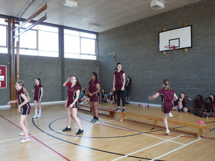 2018 Year 8 House Benchball