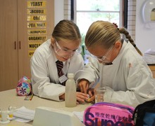 Year 5 Science Challenge Round 1 (20)