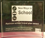 Platinum travel award