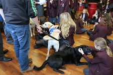 Guide dog xmas fair dec 15 21