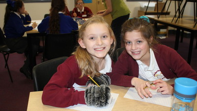 Year 5 Primary Workshop - English