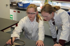Year 6 laboratory workshop 12