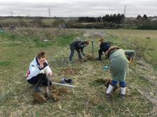 Kingshott tree planting March 2020 (7)