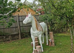 Unicorn wows primary pupils