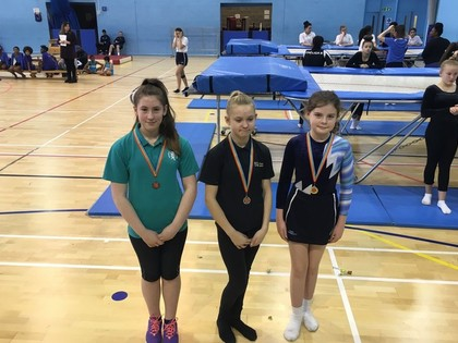 Enfield Borough Trampoline Festival