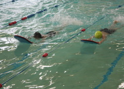 Cross Trust Primary Swimming Gala